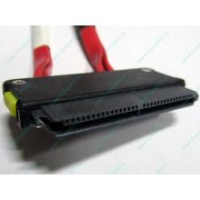 SATA-кабель для корзины HDD HP 451782-001 459190-001 для HP ML310 G5 (Ивантеевка)