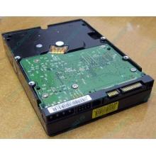 Б/У жёсткий диск 400Gb WD WD4000YR Caviar RE2 7200 rpm SATA  (Ивантеевка)