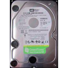 Б/У жёсткий диск 500Gb Western Digital WD5000AVVS (WD AV-GP 500 GB) 5400 rpm SATA (Ивантеевка)