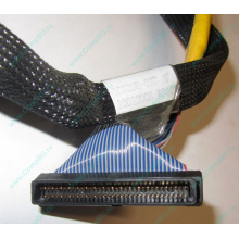 Кабель SCSI HP 166298-037 для HP ML370 G4 (Ивантеевка)